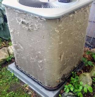 Twin Cities Air Conditioner Coil Cleaning Before